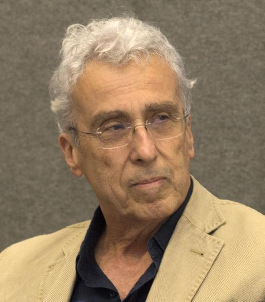 Teixeira Coelho